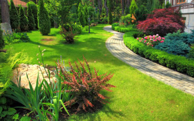 Jak si naplánovat zahradu